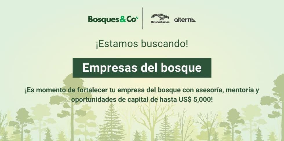 Bosques & Co