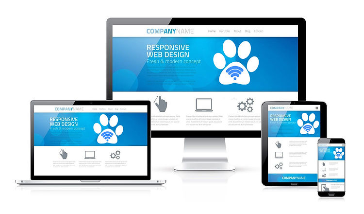 WEB-DESIGN-IMAGE.jpg
