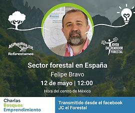 secfor_forestal_en_españa.png