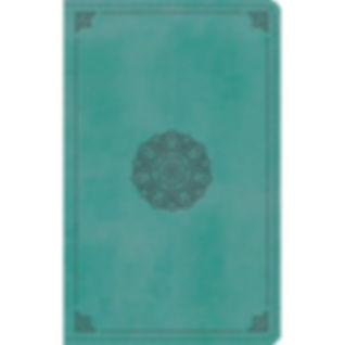 fbe98694-4a4f-4425-a7b7-ce066d8cf11e_1.2
