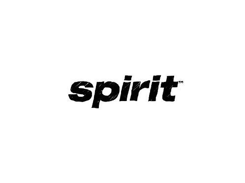 Spirit Airlines Interview Guide