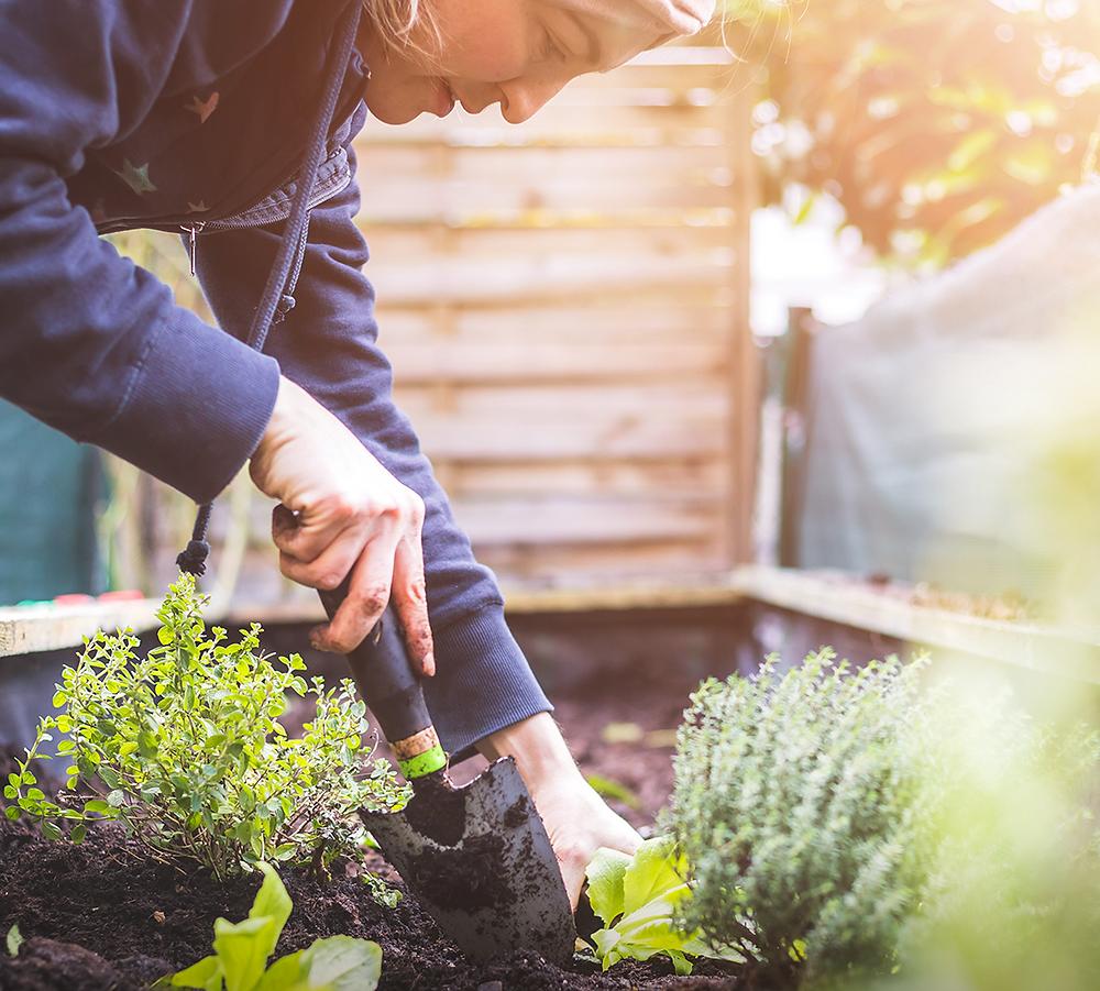 Persona cultivando un huerto en su casa autosuficiente