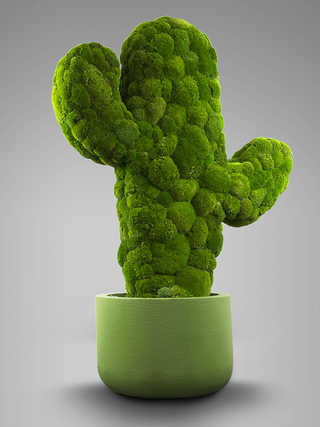 """UME 3D Art: """"Moss Trend""""."""