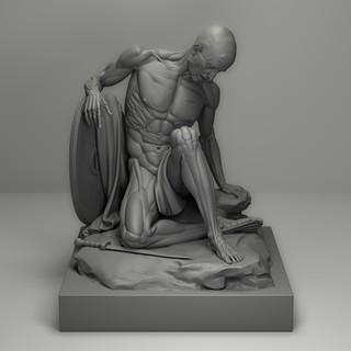 Dying Gladiator UME anatomy