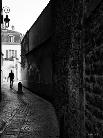 Dijon ville suite-4.jpg