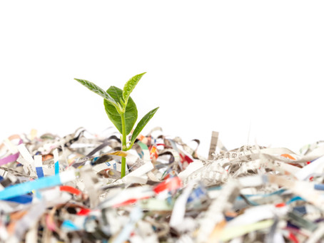 Paper Shredding – A Major Step towards Becoming an Eco-Friendly Organization