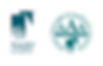 NAID__Logo.png
