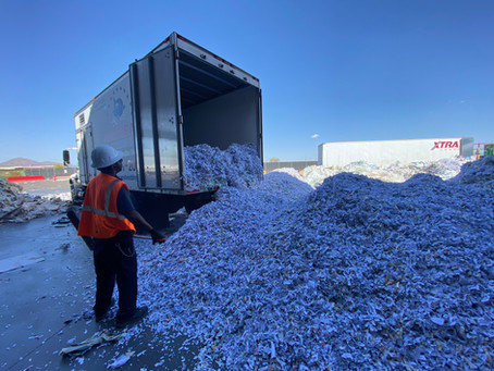 TALES FROM THE SHRED YARD