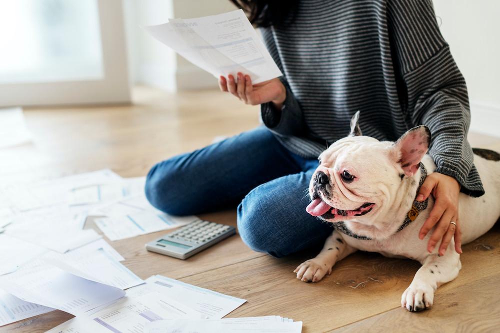 síndica analisando documentos do condomínio com cachorro ao seu lado