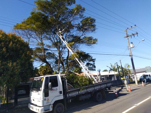 Podas de árvores em linhas de distribuição energizadas