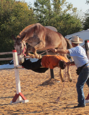 10steve-missy-jump