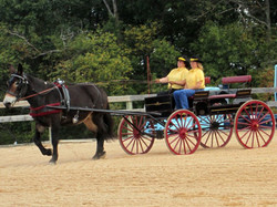 10gwen-carriage2