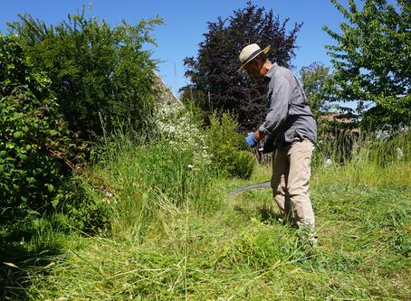 Zeisen en hooien met de tuinman van Agatha   video