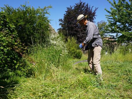 Zeisen en hooien met de tuinman van Agatha | video
