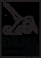 Dilna_logo_V4(1).png