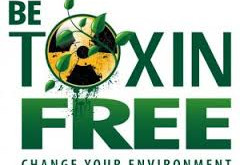 Great Resources By Category For Toxic-Free, Green Products & Living
