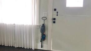 One Room Challenge | Week 3