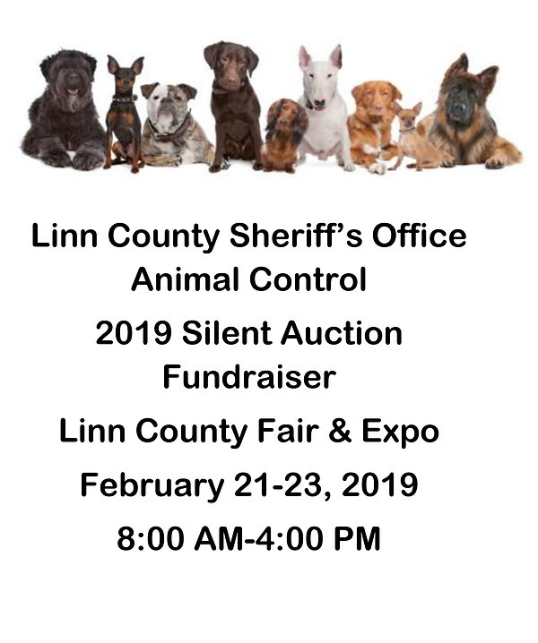 2019 Silent Auction Flyer.jpg