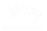 KAAP Logo white-01.png