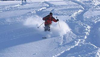janvier 2007 061ter.jpg