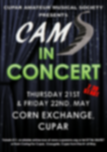 Cams in Concert 2020 image.png
