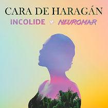 Cara de Haragan Album Cover Small.jpg