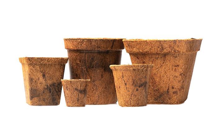 Coir Nursery Pots