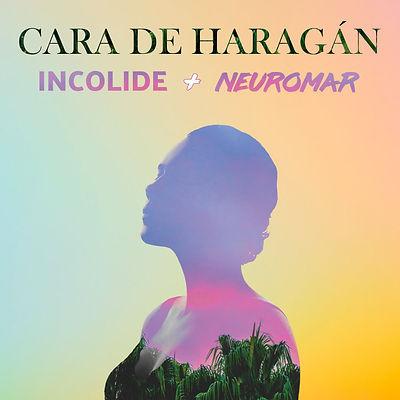 Cara de Haragan Album Cover Large.jpg