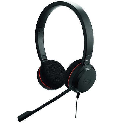 Evolve 20 Duo MS (4999-823-109)