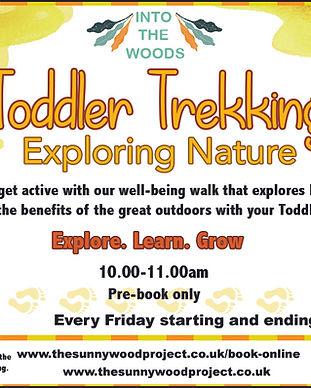 toddler trekking.jpg