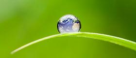 Energy-Environment.jpg