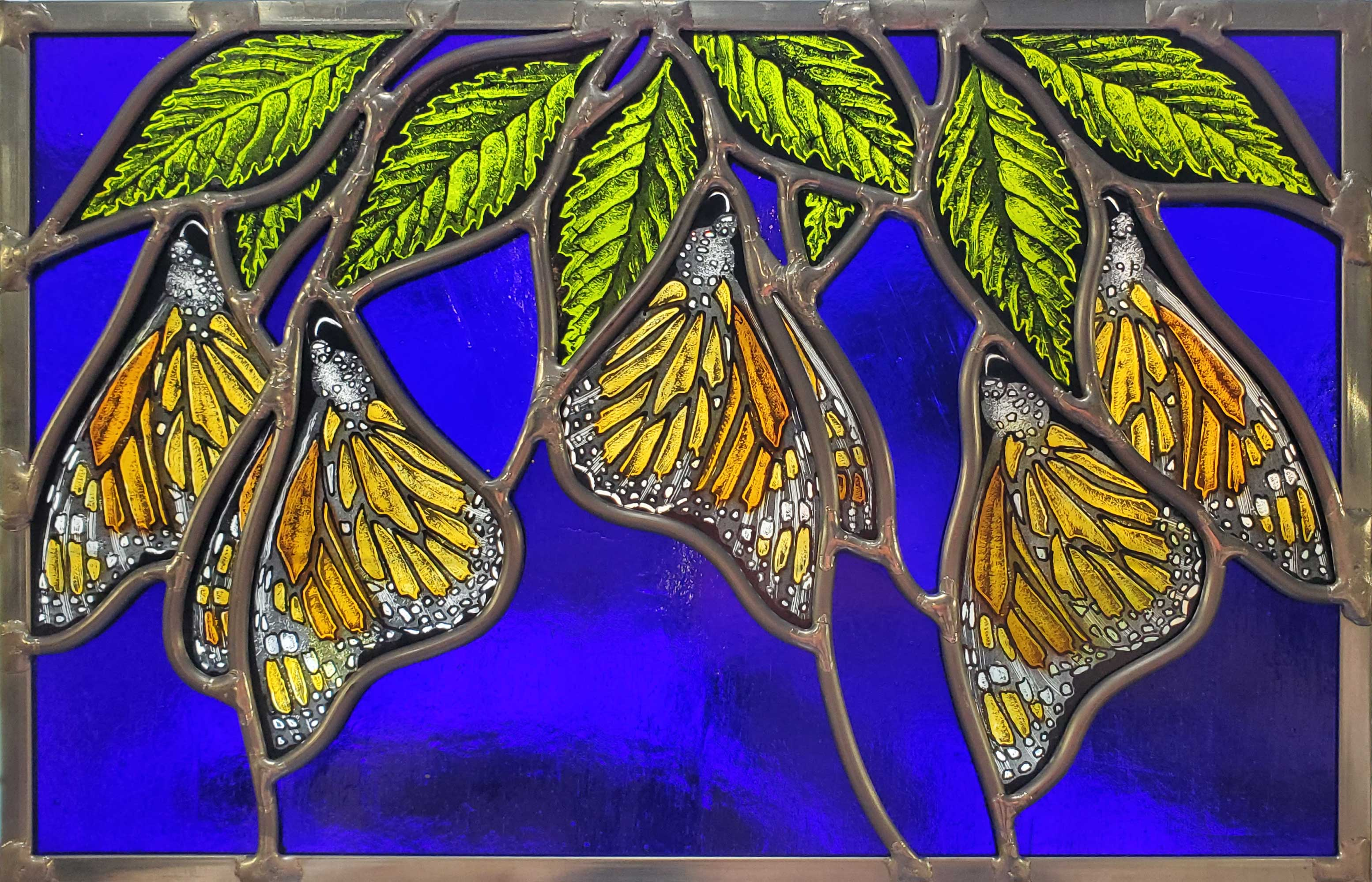 """Monarchs Dangle from Elm Leaves"""