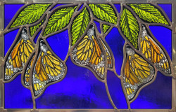 """""""Monarchs Dangle from Elm Leaves"""""""