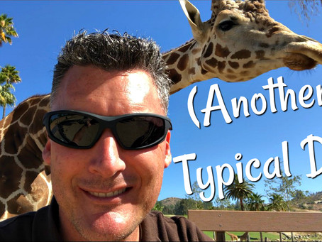 Another Typical Day - New Vlog on YouTube.