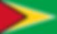 guyana tenders search bids procurement