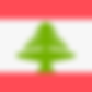 lebanon tenders search bids procurement
