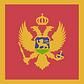 montenegro tenders search bids procurement