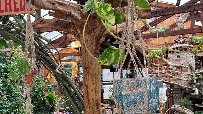 Macrame Plantenhanger (homemade in Het Paradijs)