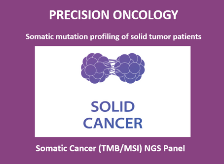 Solid Tumor NGS Panel (TMB/MSI)