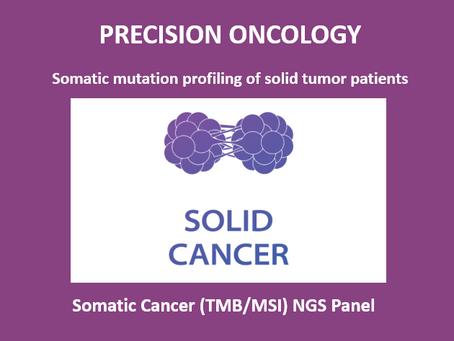 Solid Tumor NGS Panel (TMB/MSI)