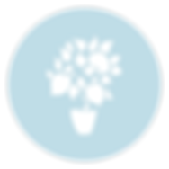 SHG-tree-circle-white-bluebg.png