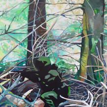 Inn i den mørke skog 1