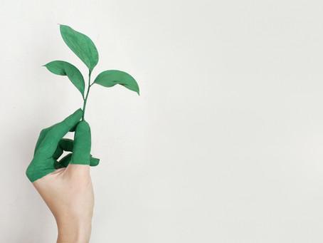 Como o consumo consciente faz bem para o seu bolso e para o mundo