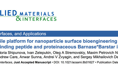New work describing an alternative way to functionalise nanoparticles for cancer  diagnostics and th