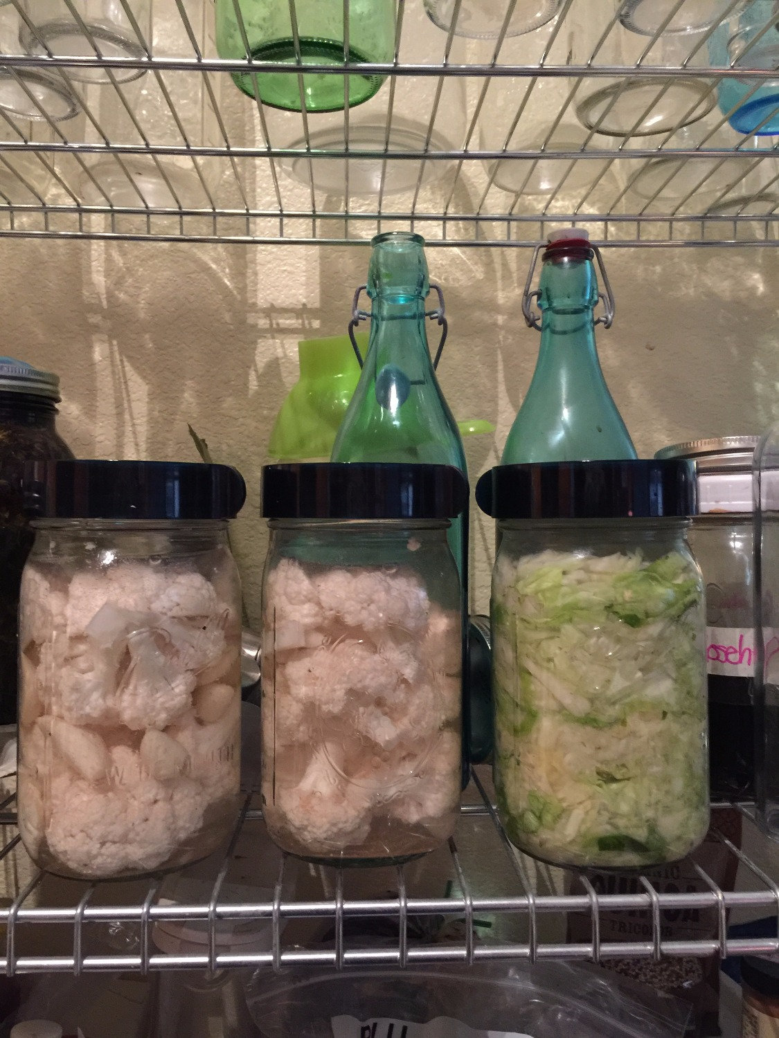 Funky Foods. Fermenting for gut health