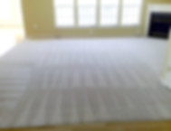 Carpet Cleaning Results, Professional Residetial Home Carpet Cleaning Service