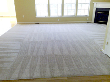 Carpet after Steam Cleaning