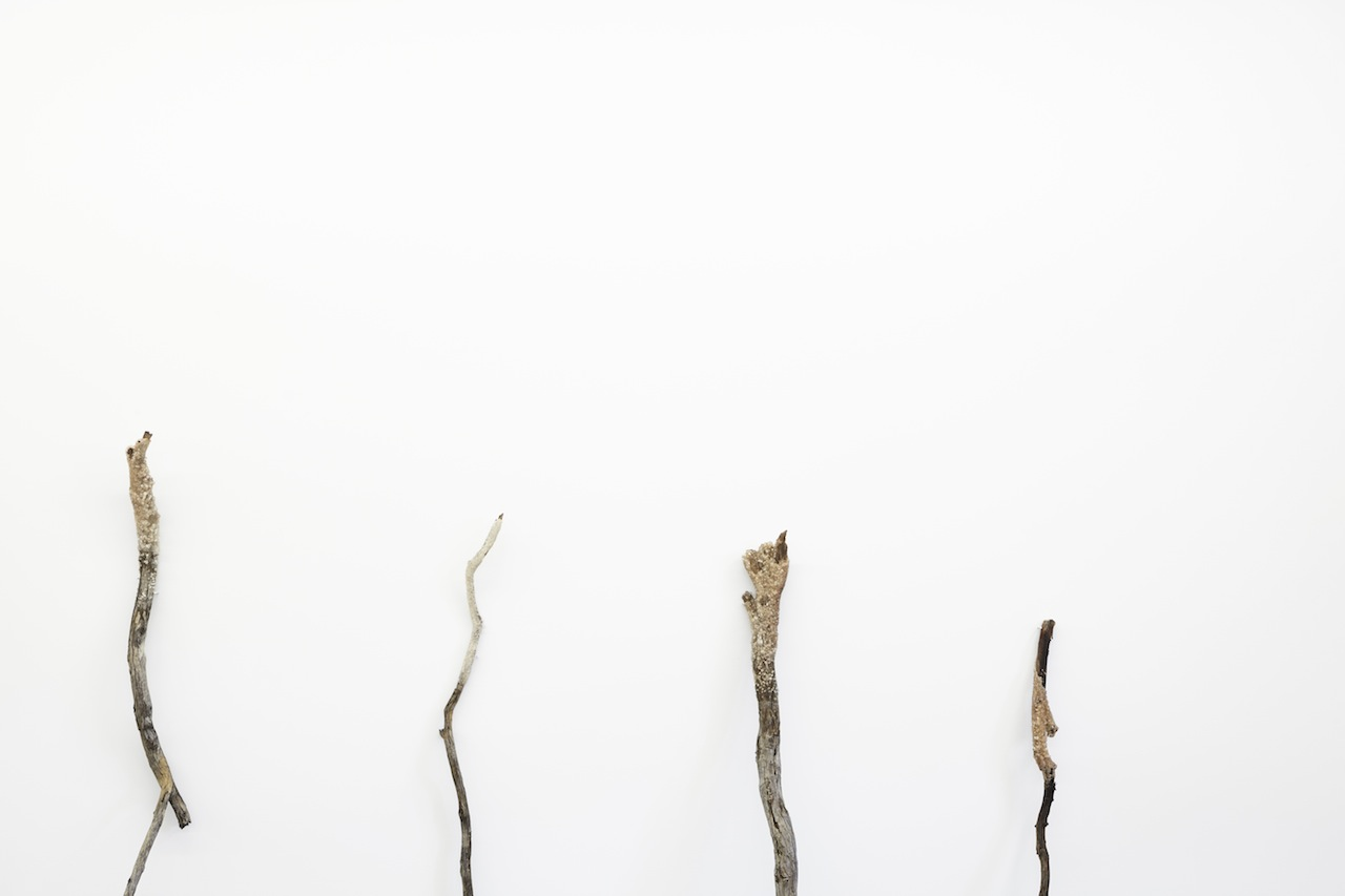 ngayirr (sacred) 2015