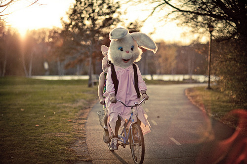 Easter rabbit on a bike