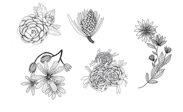 illustration identité graphique bijoux